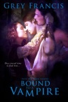 Bound to a Vampire - Front Cover