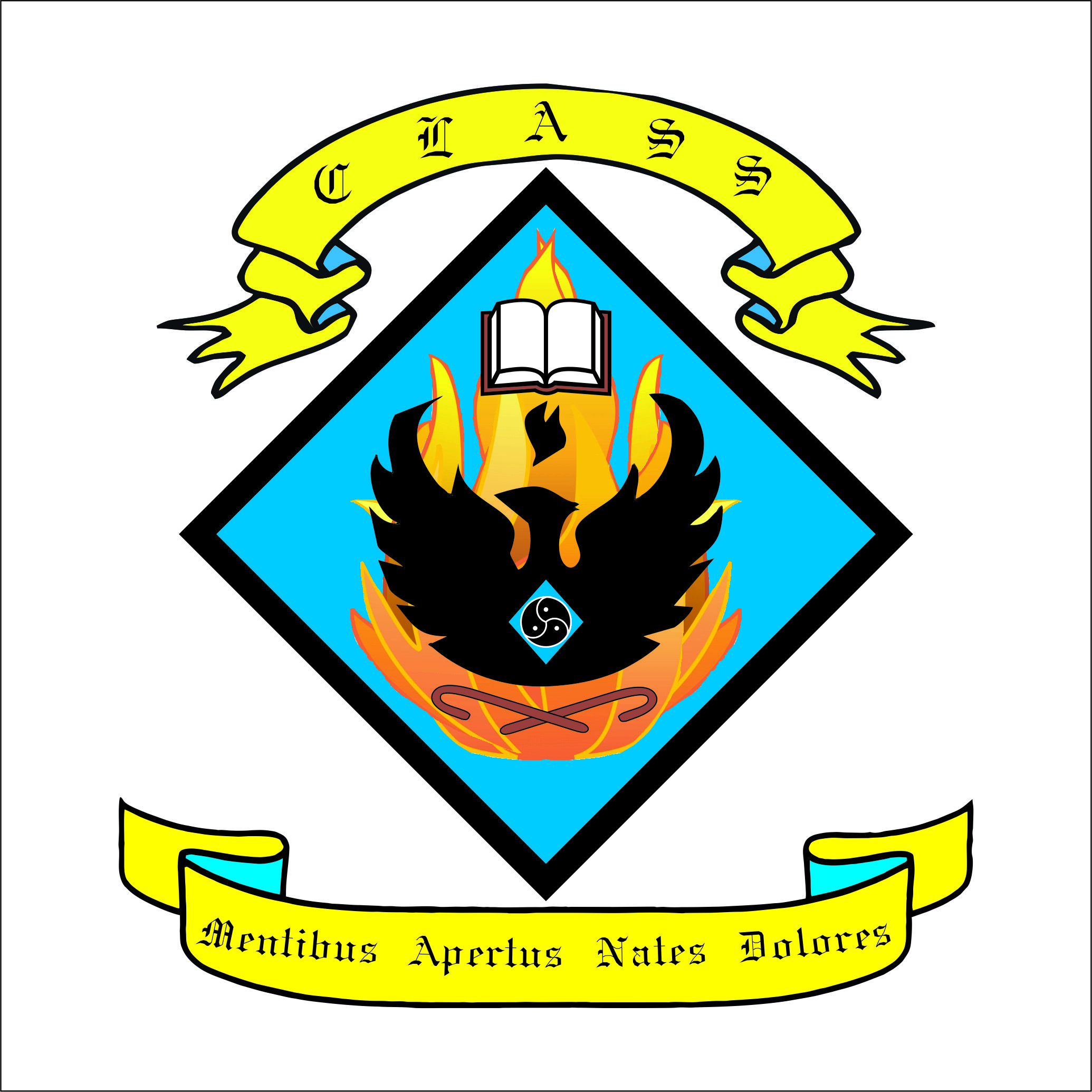 CLASS Ireland crest. Click to visit CLASS Ireland school role play group site.